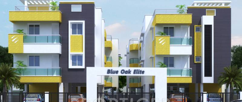 Images for Elevation of Blue Oak Elite