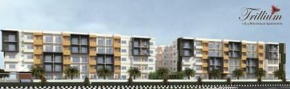 Images for Elevation of  Trillium Apartments