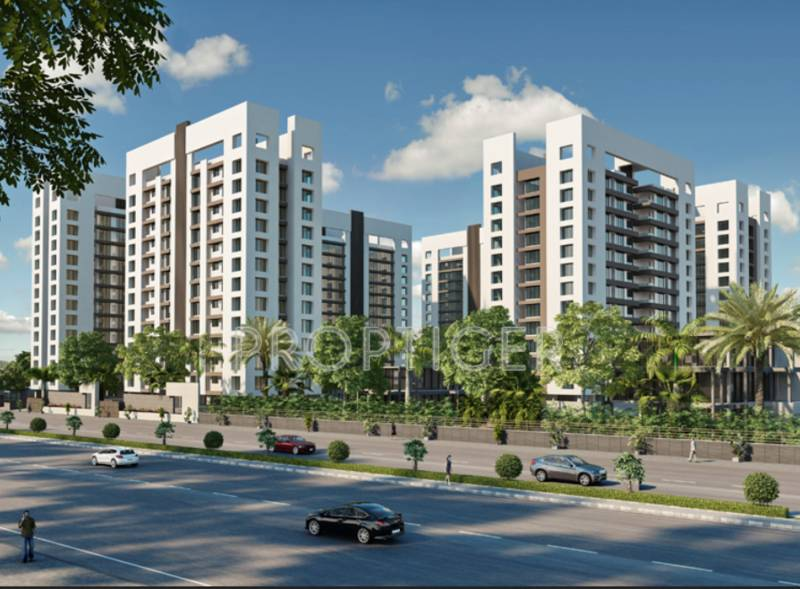 Images for Elevation of DMD Spring Valley
