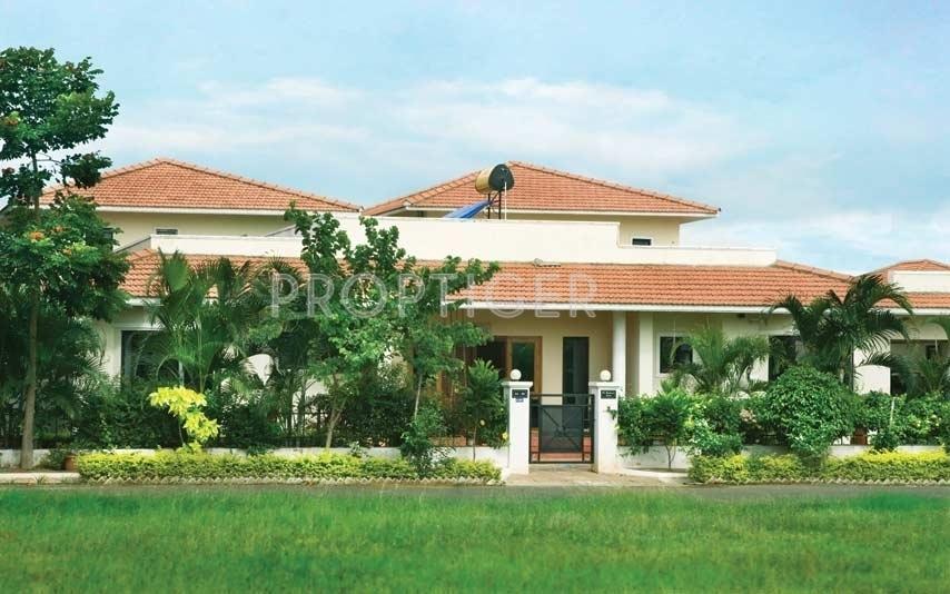 517 Sq Ft 1 Bhk 1t Villa For Sale In Serene Senior Living