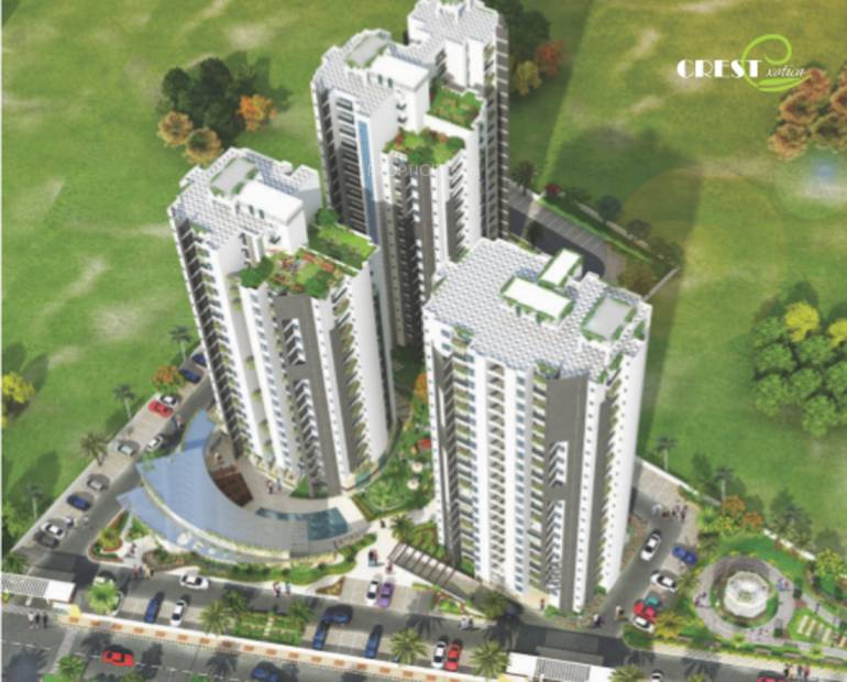 exotica Images for Elevation of Crest Exotica