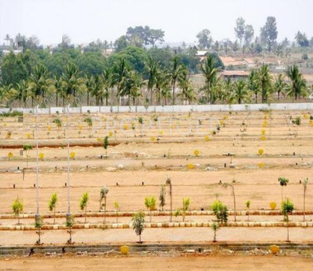 R Sons Infra Land Developers Jeevan Deep Group G