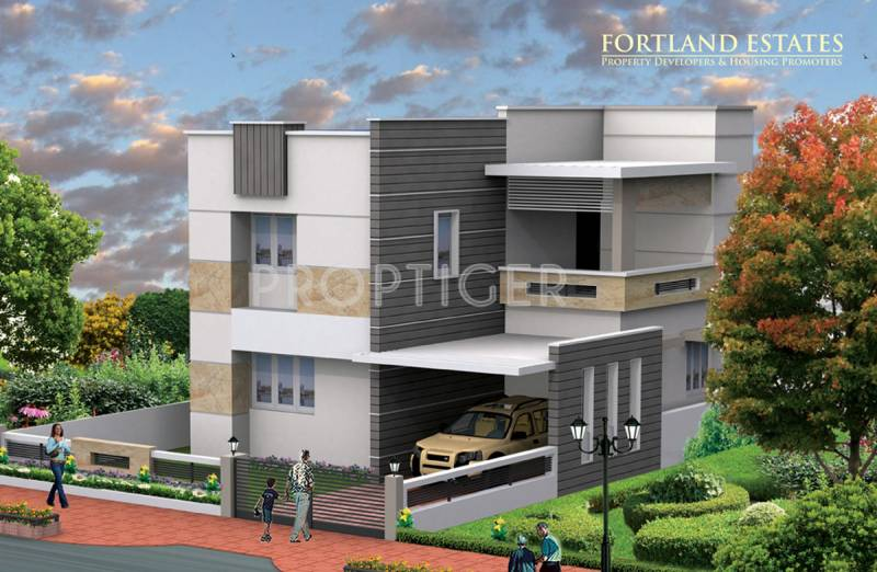 Images for Elevation of Fortland Euphoria