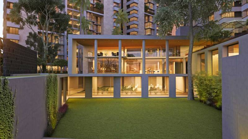 Images for Elevation of Ganesh Maple Tree