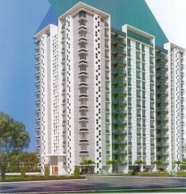 Images for Elevation of Pride Palatia