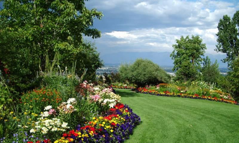 eden-palette Landscaped Gardens