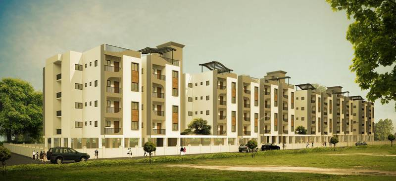 Images for Elevation of Vakil Marigold
