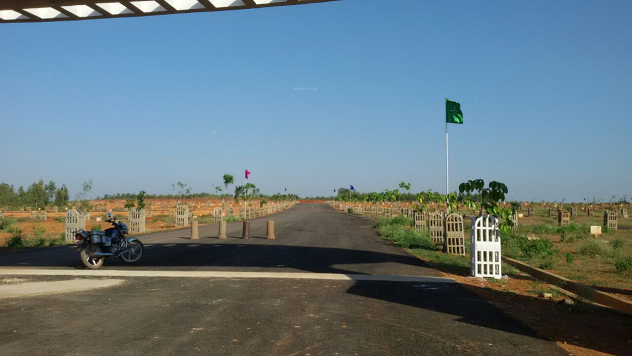 1338 Sq Ft Plot For Sale In Enrich Properties Aero View