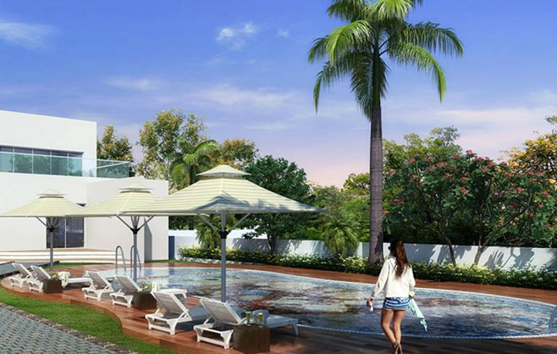 Images for Amenities of Dynamic Oasis