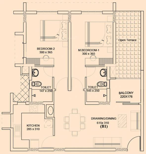 Asset Carol (2BHK+2T (1,045 sq ft) 1045 sq ft)