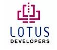 Lotus Developers