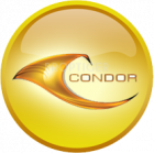 Condor Builders Pvt Ltd