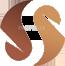 Sarfaraz Developers